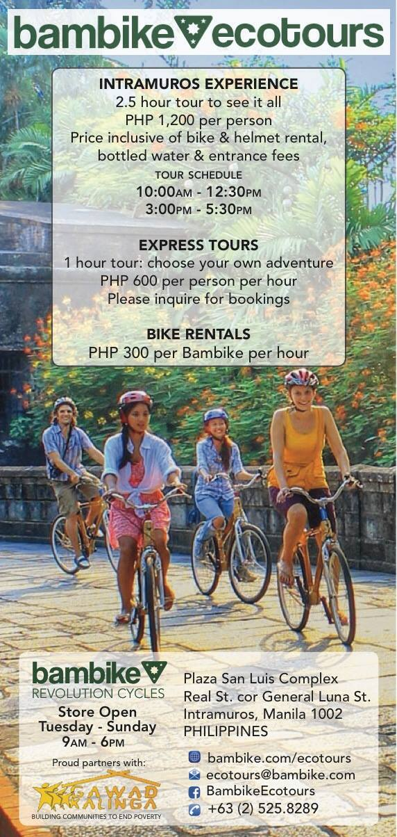 bambike poster