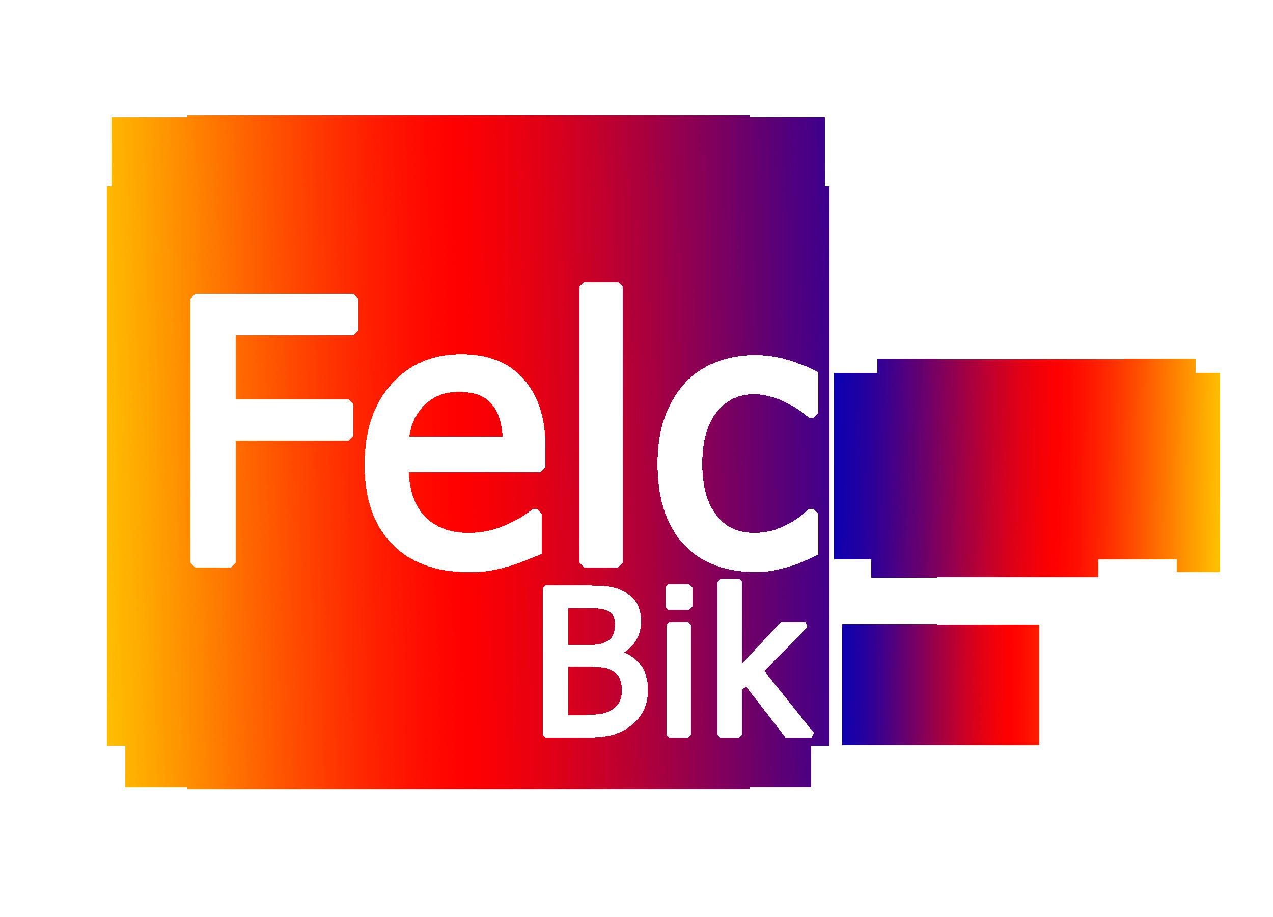 felcon logo